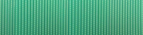 colore-yucca_3047
